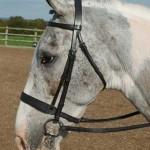 Standard Hunter Bridle, Plain Nose & Browband Option.