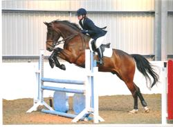 Catherine & Smudge jumping in their four Star Jump Saddle. Gel panel, Sports Horse fit