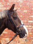Comfort Show Hunter Bridle