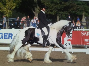 Tiger Tim and Aly Matravers winning the Restricted Novice at the British Dressage Championship 2013