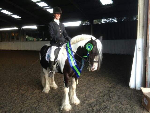 Tiger Tim 2nd in the Open Novice at the British Dressage
