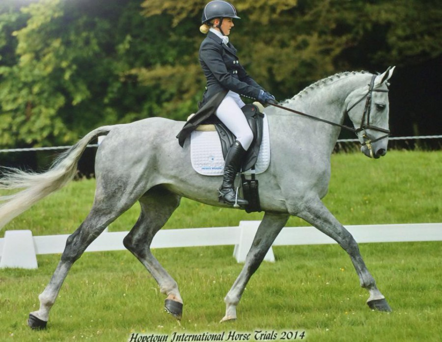 Yasmin Ingham and Fernhill Urco Competing at Hopetoun International Horse Trials 2014