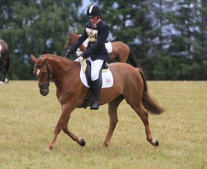 Callum and Prince Qualify for Badminton Grass Roots 2015 in their Cadence, Sports Horse Fit
