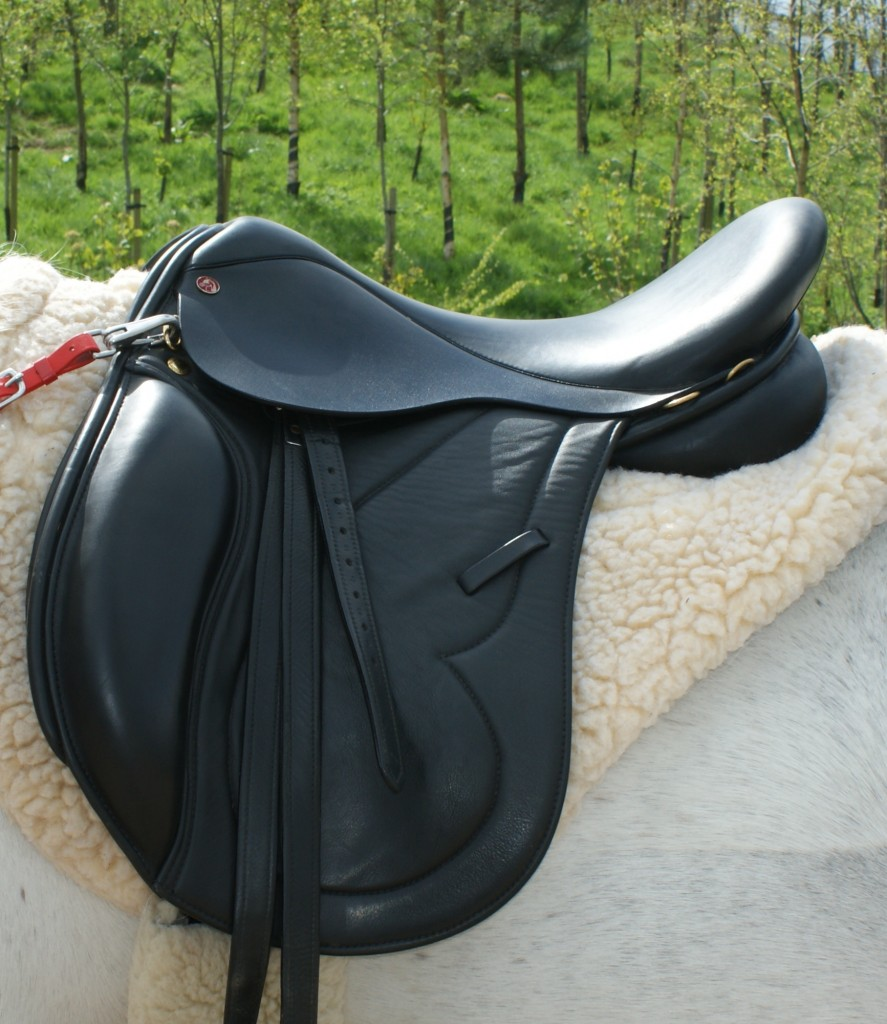 Comfort Elite Evolution Endurance Saddle