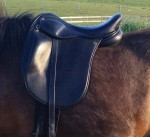 Comfort Elite Maj-Britt Carter Icelandic Saddle