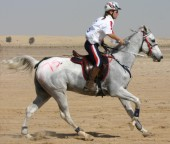 Sarah & Simbar Riding 100 miles in her ReactorPanel Saddle at the World Endurance Championship 2006