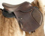 The Esprit, ReactorPanel Jumping Saddle