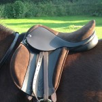 "The Pony Saddle Company First Saddle,  By Saddle Exchange Saddling Solutions. 13"" Panel, Extended Seat which feels like a 14"""