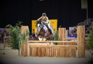 Here's a picture of Dycott Welsh King Competing in his Glen at Horse of the Year Show 2016