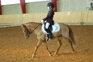 Mie and Icelandic cross, Prins competing at dressage in their Pony Saddle Company TavyFirst Saddle, native Pony Fit.