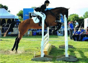 Steph & Zippy Jumping in their ReactorPanel Foxhunter