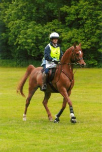 Sue Buckley And George Competing at The Dunkeries 2010in their VSD Traditional