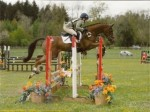 Libby Seed and Saddles for High Withered Event Horses