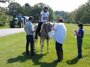 Nicki, Mango and Husband Andy at Windsor Endurance Ride 2014
