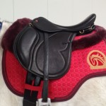 Evolution ReactorPanel Endurance Saddle