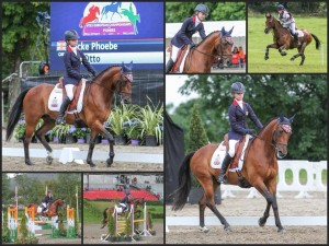 Phoebe Locke and mr Otto competing in our Comfort Elite Rapport and Puissance Saddles, Sports Pony fit.