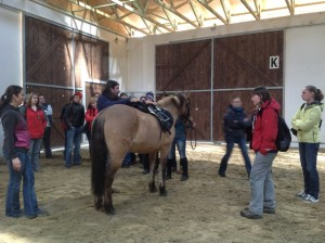 Saddle Fit Awareness Clinic