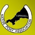 native pony association cornwall