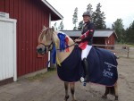 Vibeke Lonskov and saddles for Remedial Horses