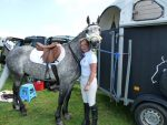 Penny Allen, Saddle Fitter for Cornwall