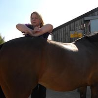 Liz Troman Accredited saddle fitter for Shropshire, Worcestershire, Herefordshire and West Midlands.